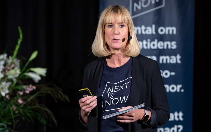 Sara Westerlin på webinar Next is Now - It's time for action.